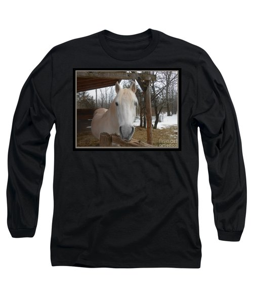 The Picture Perfect Paso Fino Stallion Long Sleeve T-Shirt by Patricia Keller