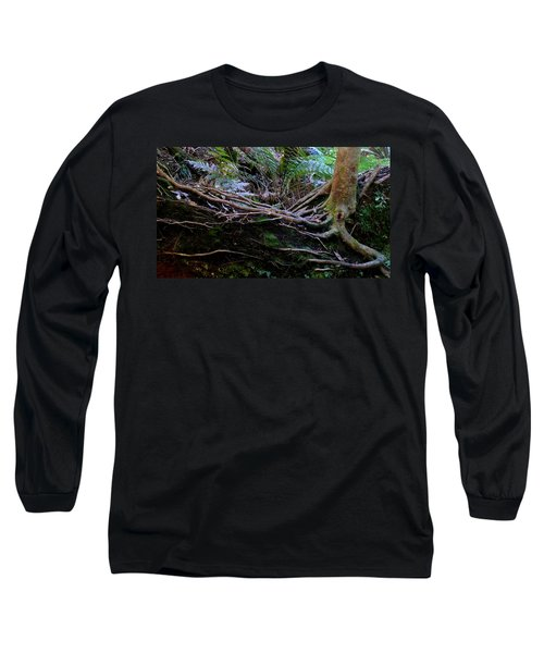 Long Sleeve T-Shirt featuring the photograph The Salamander Tree by Evelyn Tambour
