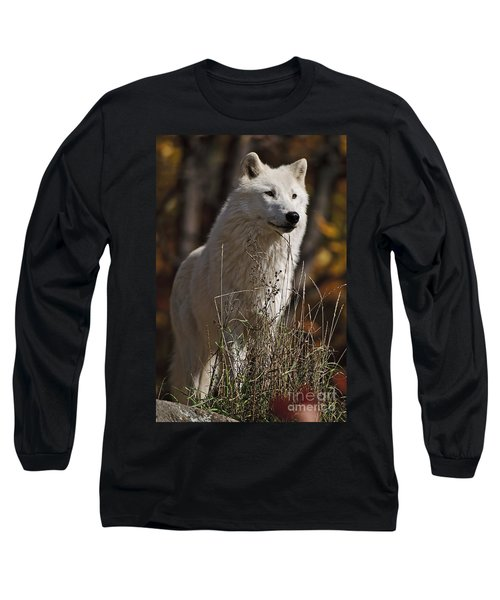 Long Sleeve T-Shirt featuring the photograph The Sentinel by Wolves Only