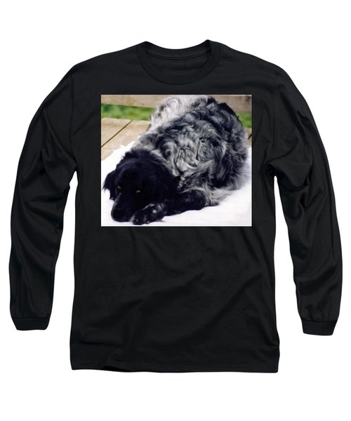 The Shaggy Dog Named Shaddy Long Sleeve T-Shirt