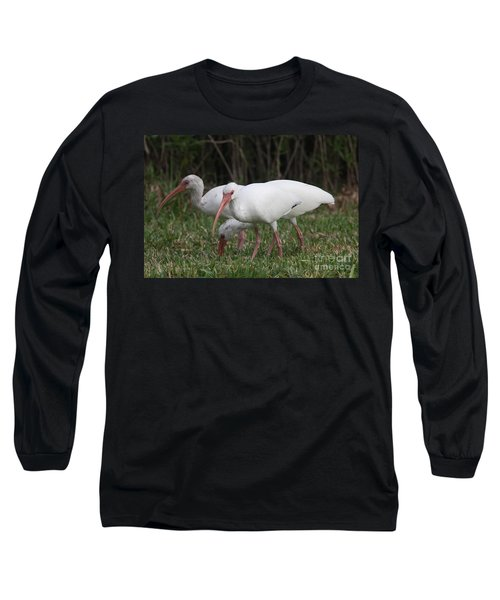 Long Sleeve T-Shirt featuring the photograph Three Ibis Together by Christiane Schulze Art And Photography