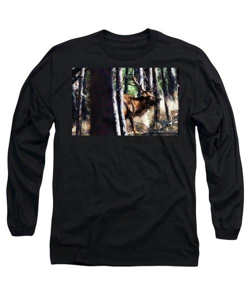 Thru The Trees Long Sleeve T-Shirt