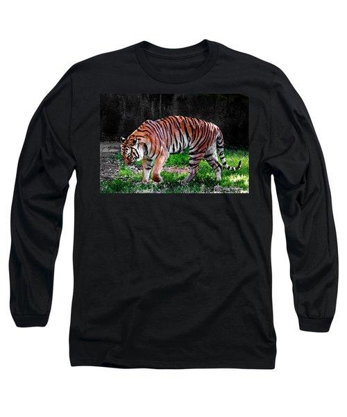 Tiger Tale Long Sleeve T-Shirt