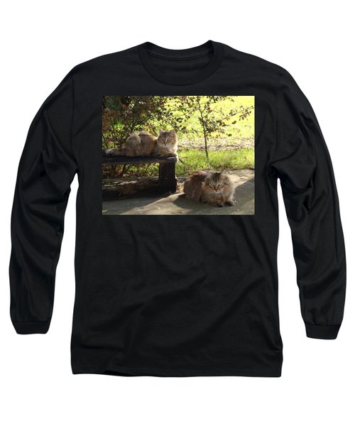 Timber And Cougar Long Sleeve T-Shirt