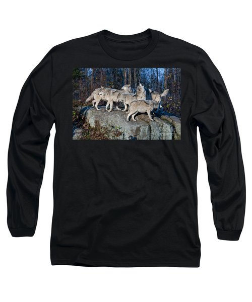 Timber Wolf Pack Long Sleeve T-Shirt