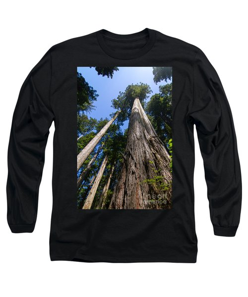 Towering Redwoods Long Sleeve T-Shirt by Paul Rebmann