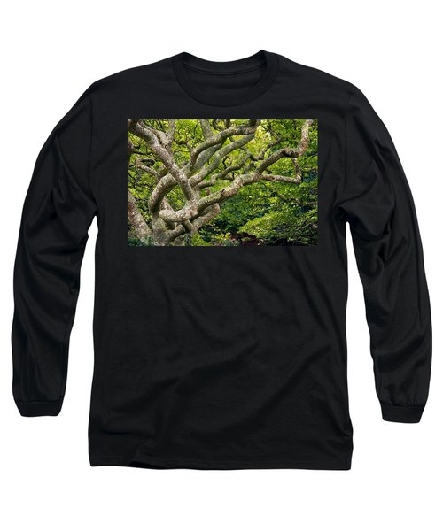 Tree #1 Long Sleeve T-Shirt by Stuart Litoff
