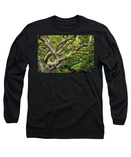 Tree #1 Long Sleeve T-Shirt