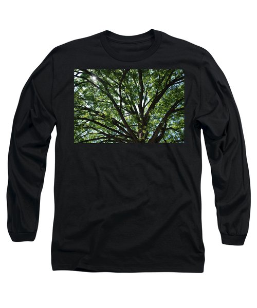 Tree Canopy Sunburst Long Sleeve T-Shirt