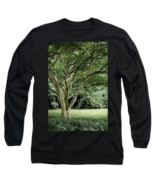 Tree Of Life Long Sleeve T-Shirt by Debbie Karnes