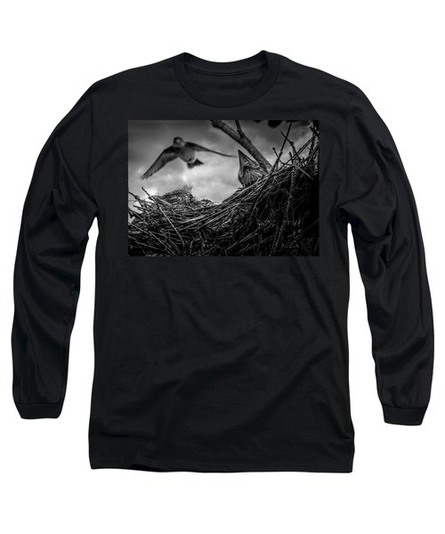 Tree Swallows In Nest Long Sleeve T-Shirt