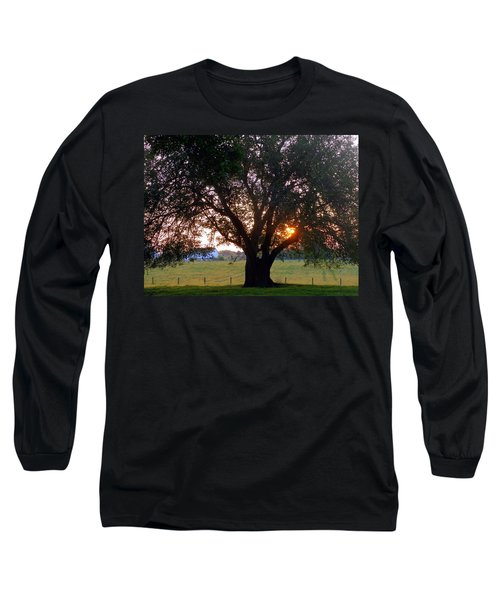 Tree With Fence. Long Sleeve T-Shirt by Joseph Skompski