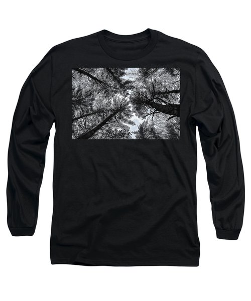 Trees In Winter Long Sleeve T-Shirt