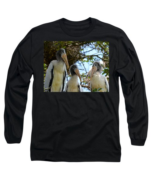 Triplet Wood Stork Nestlings Long Sleeve T-Shirt by Richard Bryce and Family
