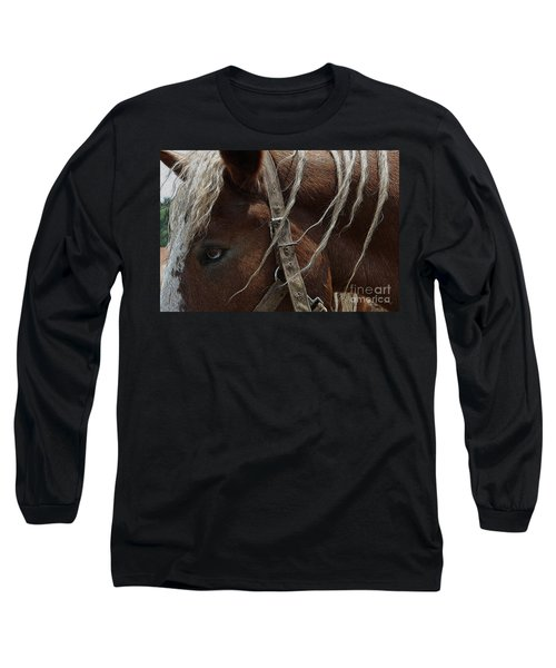 Trusted Friend 2 Long Sleeve T-Shirt by Yvonne Wright