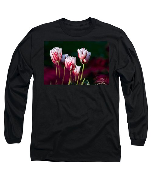 Long Sleeve T-Shirt featuring the photograph Tulips Garden Flowers Color Spring Nature by Paul Fearn