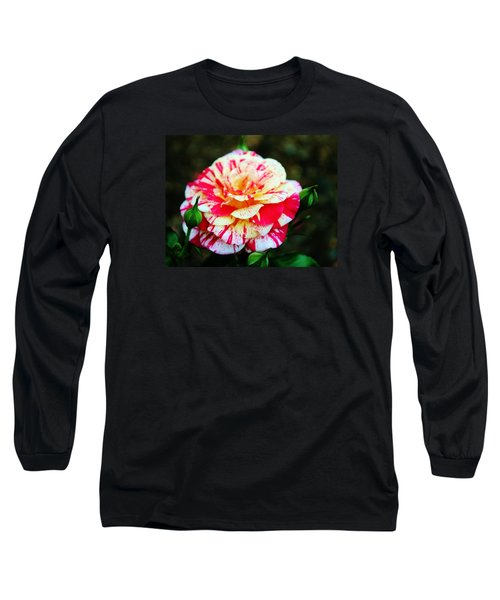 Two Colored Rose Long Sleeve T-Shirt by Cynthia Guinn