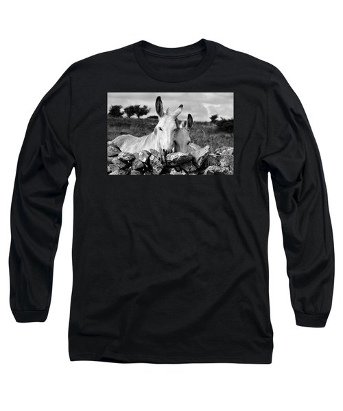 Two White Irish Donkeys Long Sleeve T-Shirt