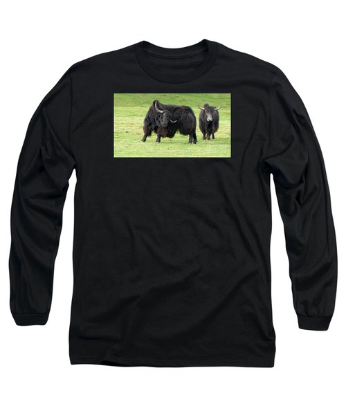 Yaketty Yak Long Sleeve T-Shirt by Liz Leyden