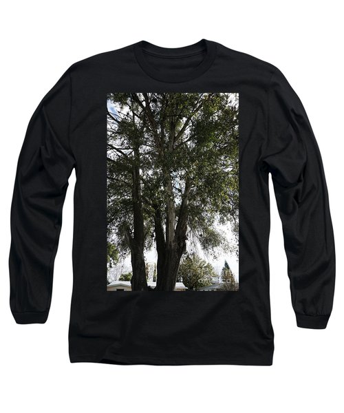 Up-view Of Oak Tree Long Sleeve T-Shirt