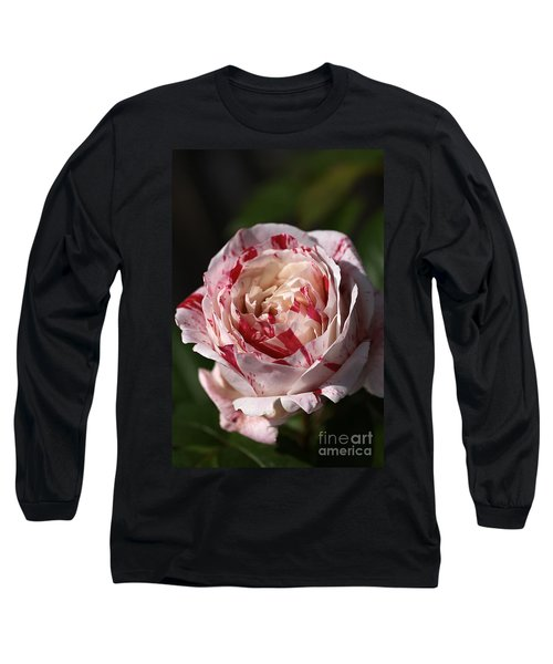 Long Sleeve T-Shirt featuring the photograph Variegated Rose by Joy Watson