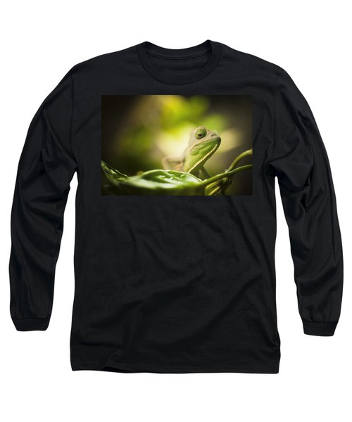 Veiled Chameleon Is Watching You Long Sleeve T-Shirt by Bradley R Youngberg