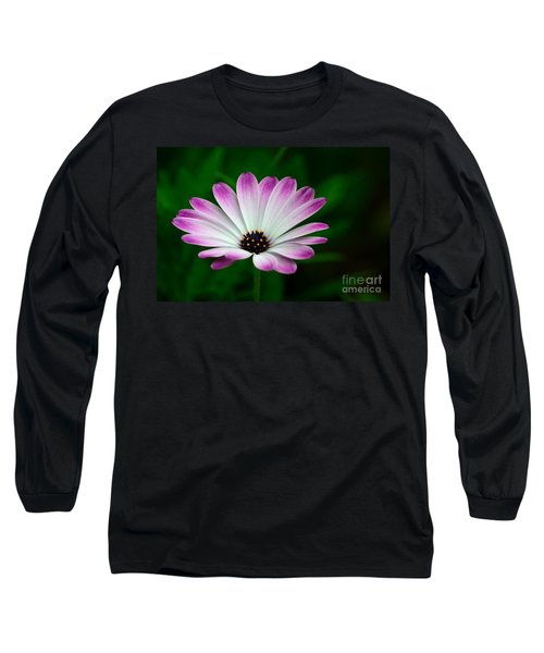 Violet And White Flower Petals With Yellow Stamens Blossoms  Long Sleeve T-Shirt by Imran Ahmed