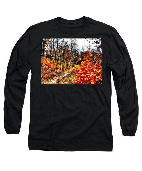 Vivid Pathway Long Sleeve T-Shirt