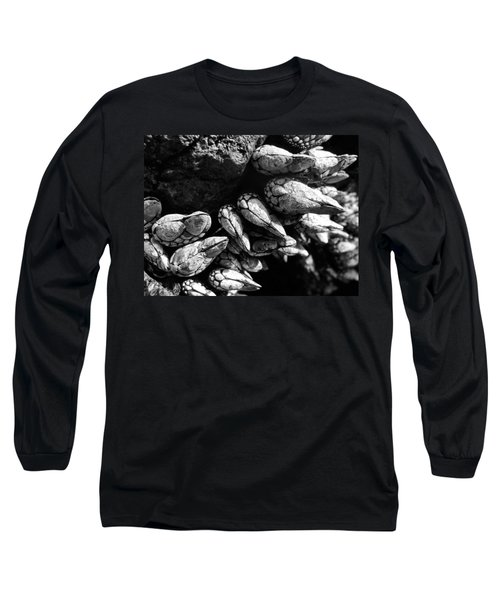 West Coast Delicacy Long Sleeve T-Shirt by Cheryl Hoyle