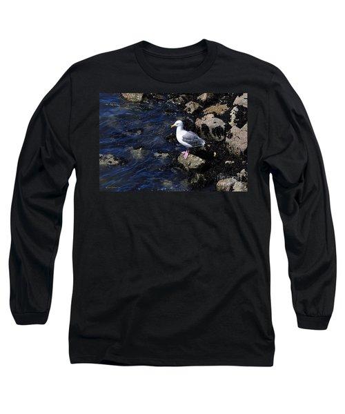 Long Sleeve T-Shirt featuring the photograph Western Gull On Rocks by Susan Wiedmann