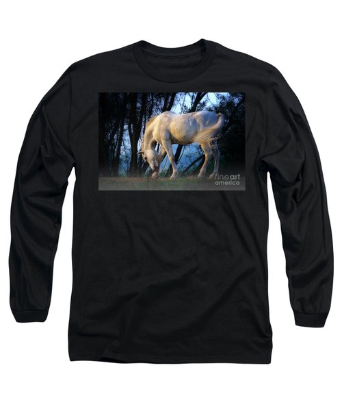White Horse In The Early Evening Mist Long Sleeve T-Shirt by Nick  Biemans