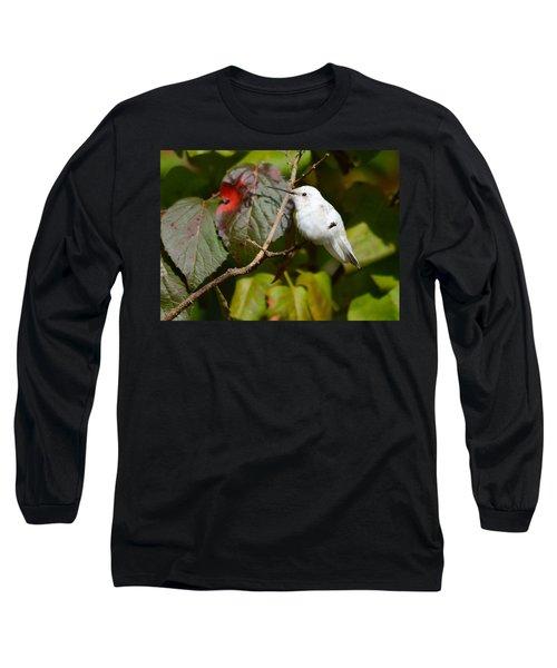 White Hummingbird Long Sleeve T-Shirt