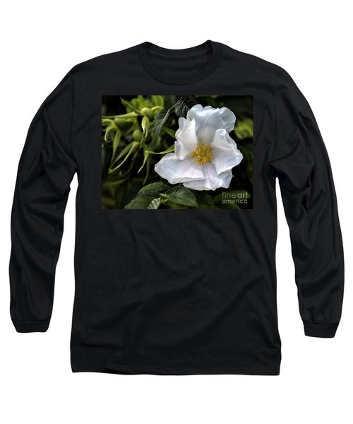 White Rose Long Sleeve T-Shirt by Belinda Greb