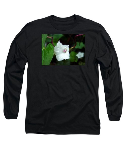 Wild Whitestar Morning Glory Long Sleeve T-Shirt by William Tanneberger