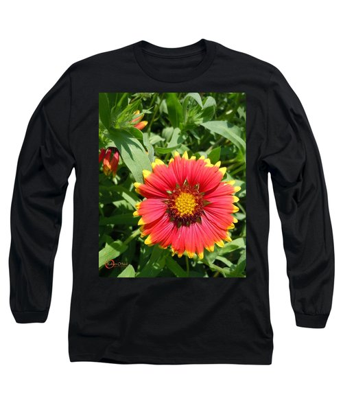 Long Sleeve T-Shirt featuring the photograph Wild Red Daisy #2 by Robert ONeil