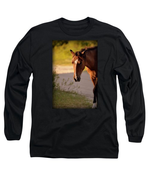 Wild Shadows Long Sleeve T-Shirt by Amanda Vouglas