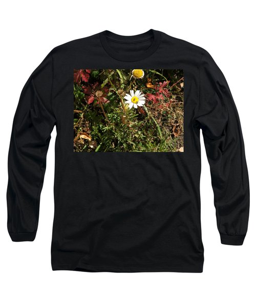 Wildflower @ Kit Carson Long Sleeve T-Shirt
