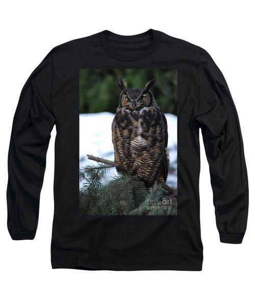 Wise Old Owl Long Sleeve T-Shirt by Sharon Elliott