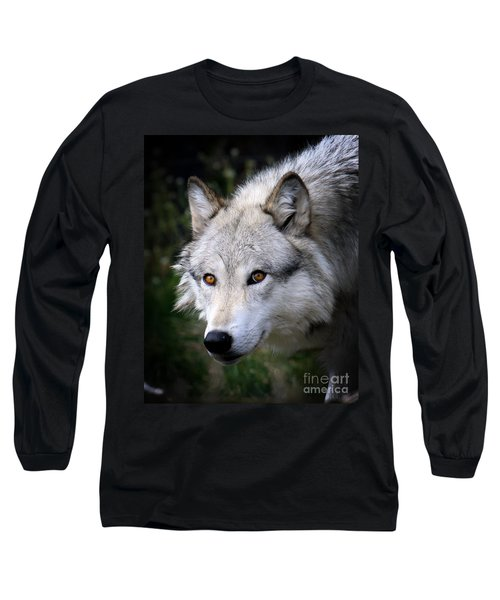 Wolf Stare Long Sleeve T-Shirt