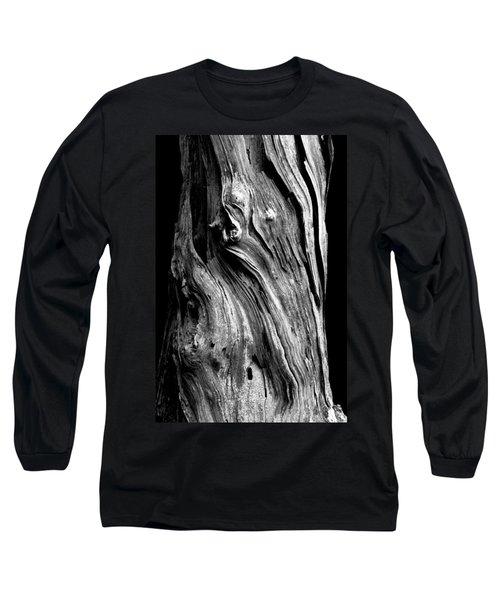 Wood Long Sleeve T-Shirt by Shane Holsclaw