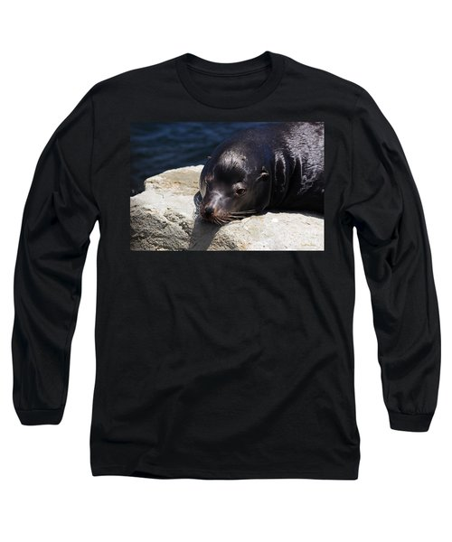 Wounded Sea Lion Resting Long Sleeve T-Shirt