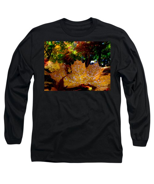 Year After Year Long Sleeve T-Shirt