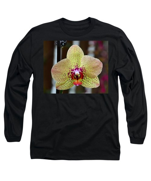 Yellow And Maroon Orchid Long Sleeve T-Shirt by Kathy Eickenberg