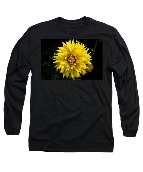 Yellow Flower Long Sleeve T-Shirt by Matt Harang