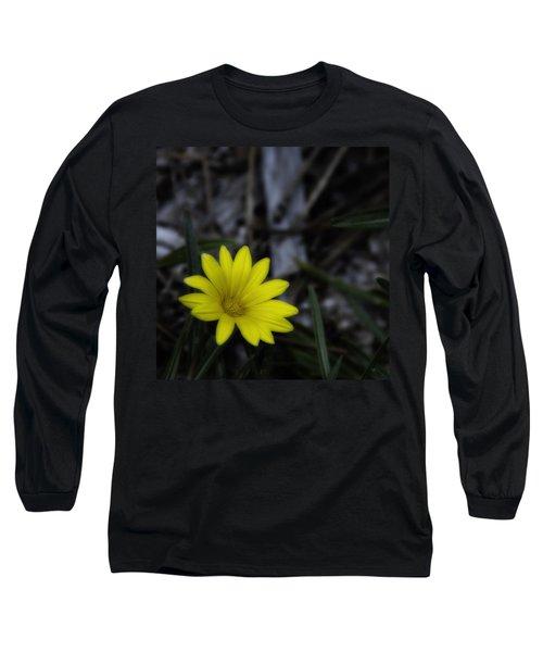 Yellow Flower Soft Focus Long Sleeve T-Shirt