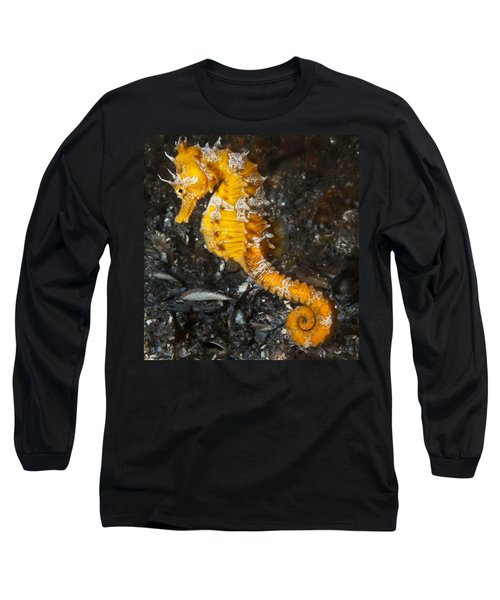 Yellow Longsnout Seahorse Long Sleeve T-Shirt