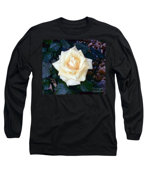 Long Sleeve T-Shirt featuring the photograph Yellow Rose At Dawn by Alys Caviness-Gober