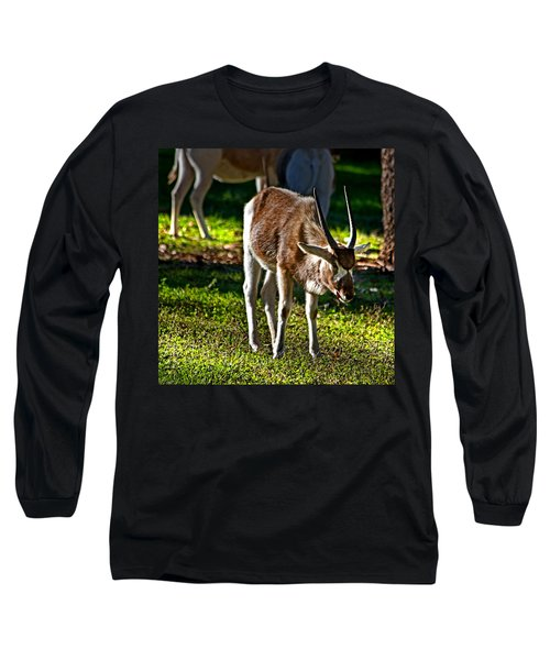 Youngster Addax Long Sleeve T-Shirt