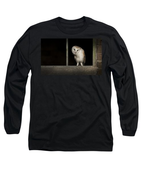 Barn Owl In Window Long Sleeve T-Shirt