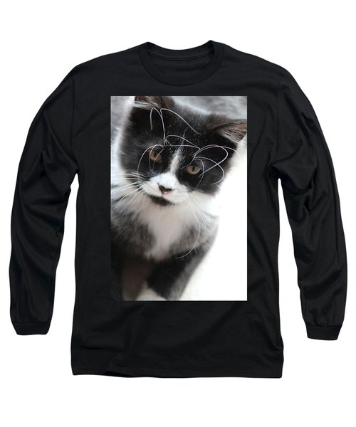 Cat In Chaotic Thought Long Sleeve T-Shirt